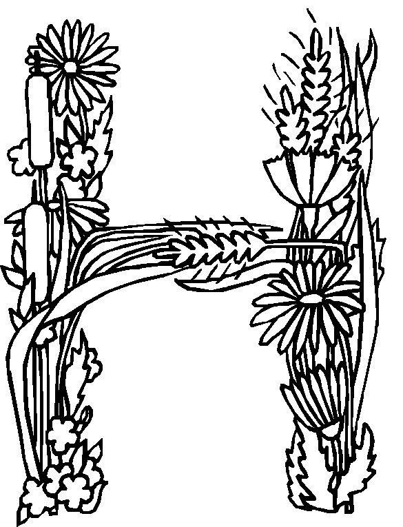 Moeilijke Kleurplaten Voor Volwassenen Bloemen.Kids N Fun Kleurplaat Alfabet Bloemen H