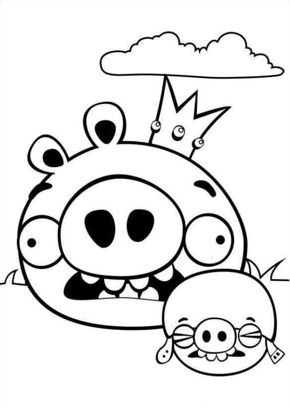 Kids-n-fun | 42 Kleurplaten van Angry Birds
