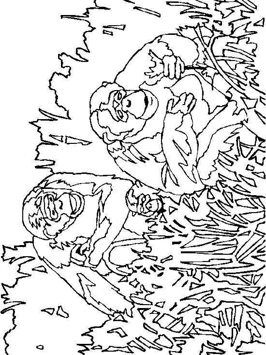 Kids N Fun 34 Kleurplaten Van Apen
