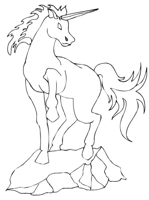 Kleurplaten Paard Met Hoorn Kids N Fun 37 Kleurplaten Van Eenhoorn