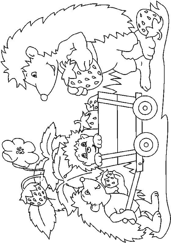 Kids N Fun 32 Kleurplaten Van Egels