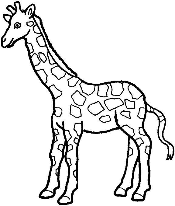 kleurplaten giraffe