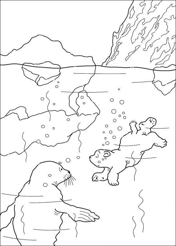 Kids N Fun Kleurplaat Lars De Kleine Ijsbeer Kleine Ijsbeer Zwemt
