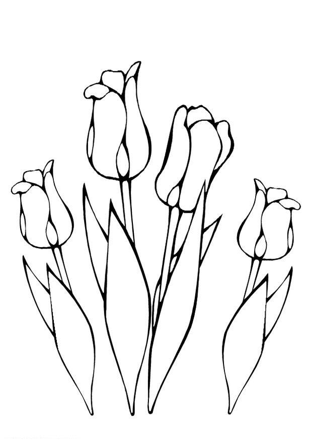 Kleurplaten Bloemen Tulpen.Kids N Fun Kleurplaat Lente Tulpen