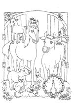 Kleurplaten Van Paarden En Pony 39 Kids N Fun 63 Kleurplaten Van Paarden