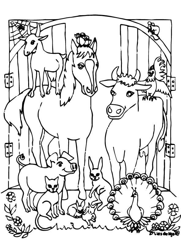 Kleurplaten Paarden In De Stal.Kids N Fun Kleurplaat Paarden In De Stal