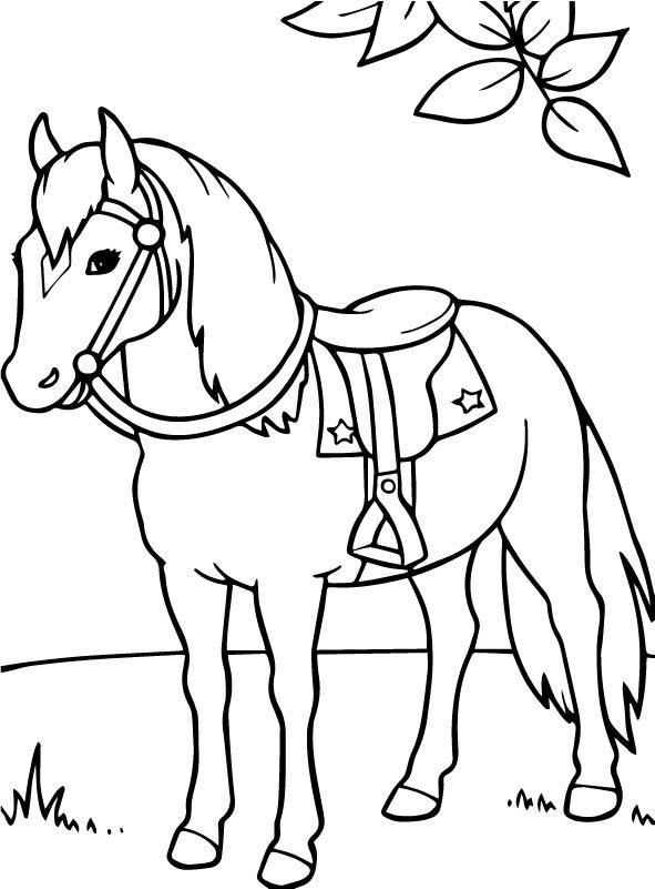 n kleurplaat paarden paarden