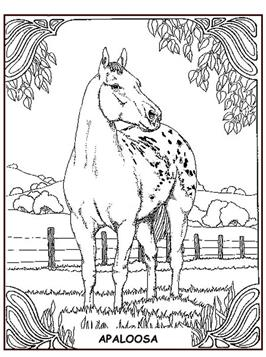 Kleurplaten Paard En Ruiter.Kids N Fun 63 Kleurplaten Van Paarden