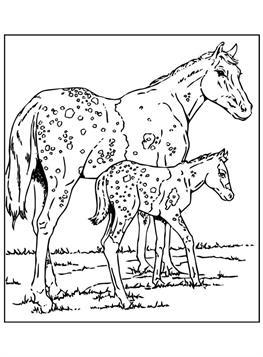 Kleurplaten Paarden Moeilijk.Kids N Fun 63 Kleurplaten Van Paarden