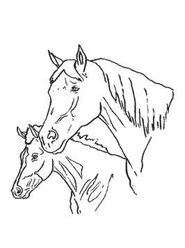 Kleurplaten Paarden Fries.Kids N Fun 63 Kleurplaten Van Paarden