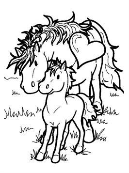n 63 kleurplaten paarden