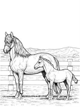 Paarden Kleurplaten Inkleuren.Kids N Fun 63 Kleurplaten Van Paarden