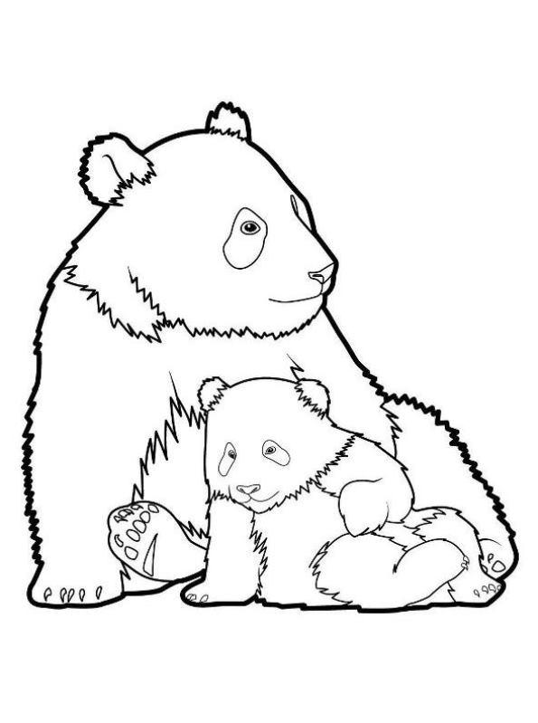n kleurplaat panda panda