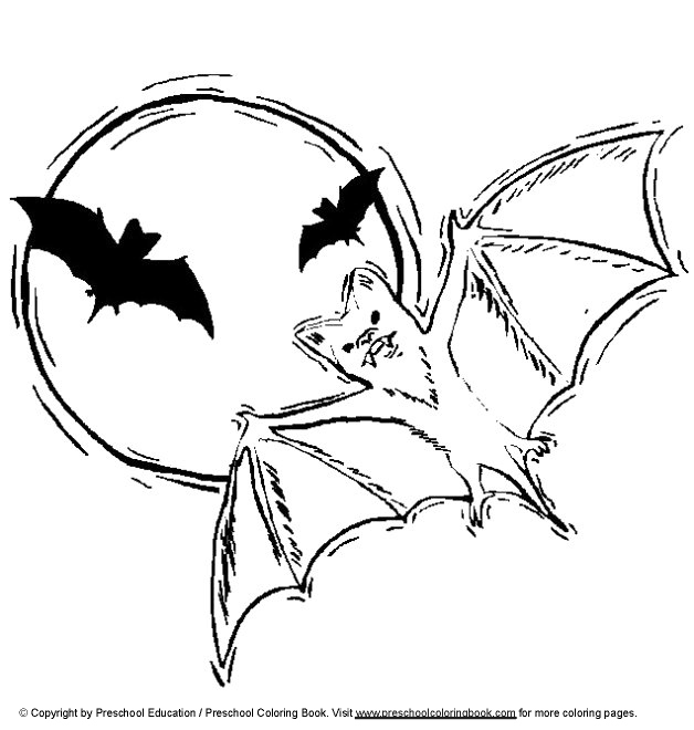 n 12 kleurplaten vleermuizen