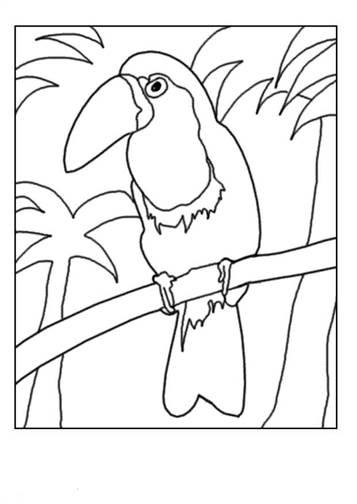 Kleurplaten Vogeltjes In De Winter.Kids N Fun 38 Kleurplaten Van Vogels