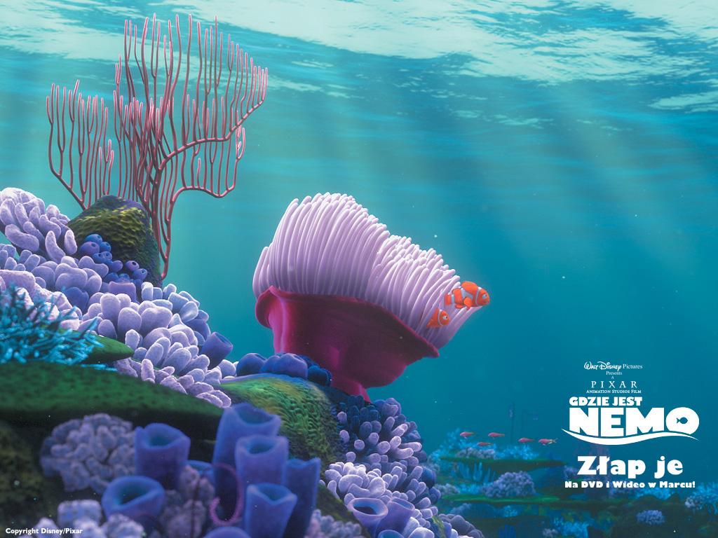 Kids N Fun Wallpaper Finding Nemo Koraal