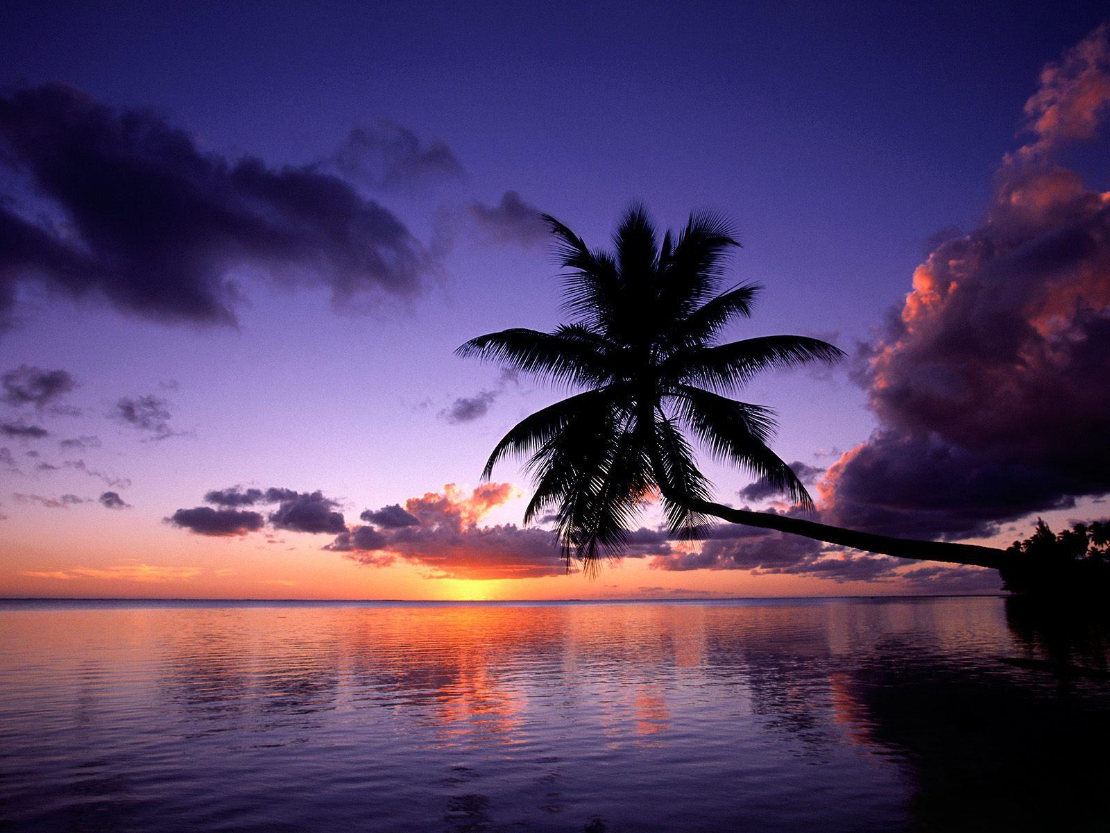 kleurplaten zonsondergang